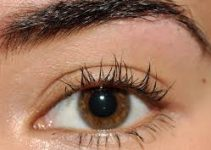 Thickening and Volume Mascara – Tips, Best Volumizing, L'Oreal Volumious and How to Apply