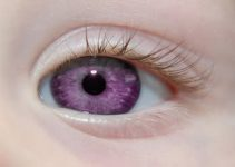 Violet Eyes – Existence, Makeup Tips and Elizabeth Taylor's Violet Eyes